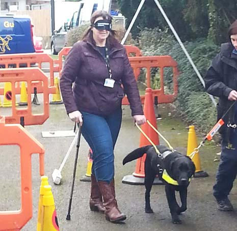 Staff from Sainsbury's in Dronfield, along with representatives from Chesterfield Guide Dogs branch, visited Guide Dogs Training School in Leamington to see the progress their sponsored Guide Dog puppy Dawson is making in his training to be a Guide Dog.