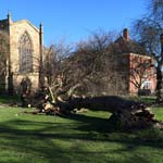 Gale Force Winds Cause Damage Across Chesterfield