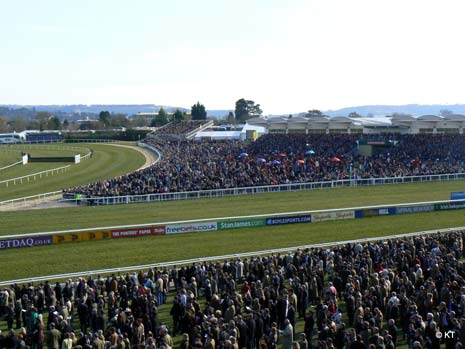 For horse racing fans there are few events that take place during the year that are enjoyed more than the Cheltenham Festival!